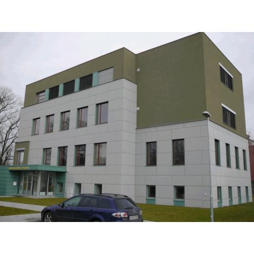 Cetris Basic cementa skaidu plāksne 26x1250x3350mm