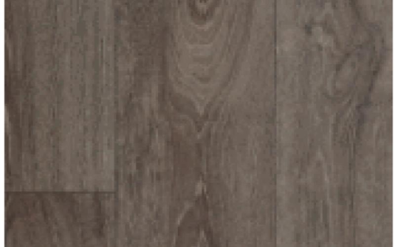 Terrana 01 / ECO 4263-262-4